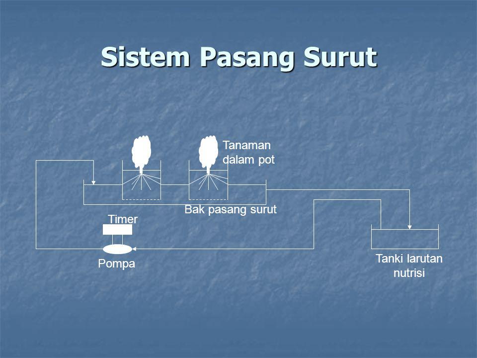 Sistem Pasang Surut Tanaman dalam pot Bak pasang surut Timer