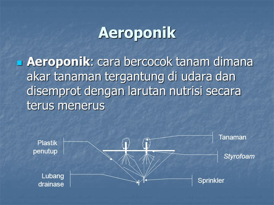 Aeroponik Aeroponik: cara bercocok tanam dimana akar tanaman tergantung di udara dan disemprot dengan larutan nutrisi secara terus menerus.