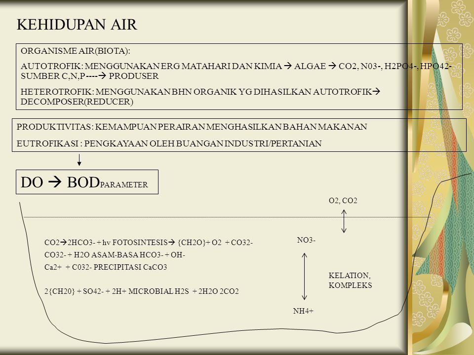 KEHIDUPAN AIR DO  BODPARAMETER ORGANISME AIR(BIOTA):