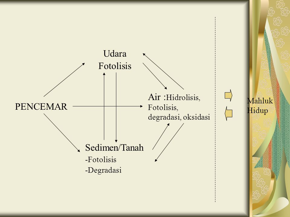 Air :Hidrolisis, Fotolisis, degradasi, oksidasi PENCEMAR