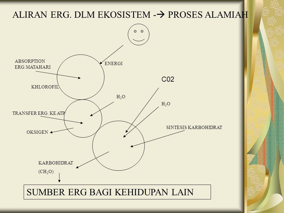 ALIRAN ERG. DLM EKOSISTEM - PROSES ALAMIAH