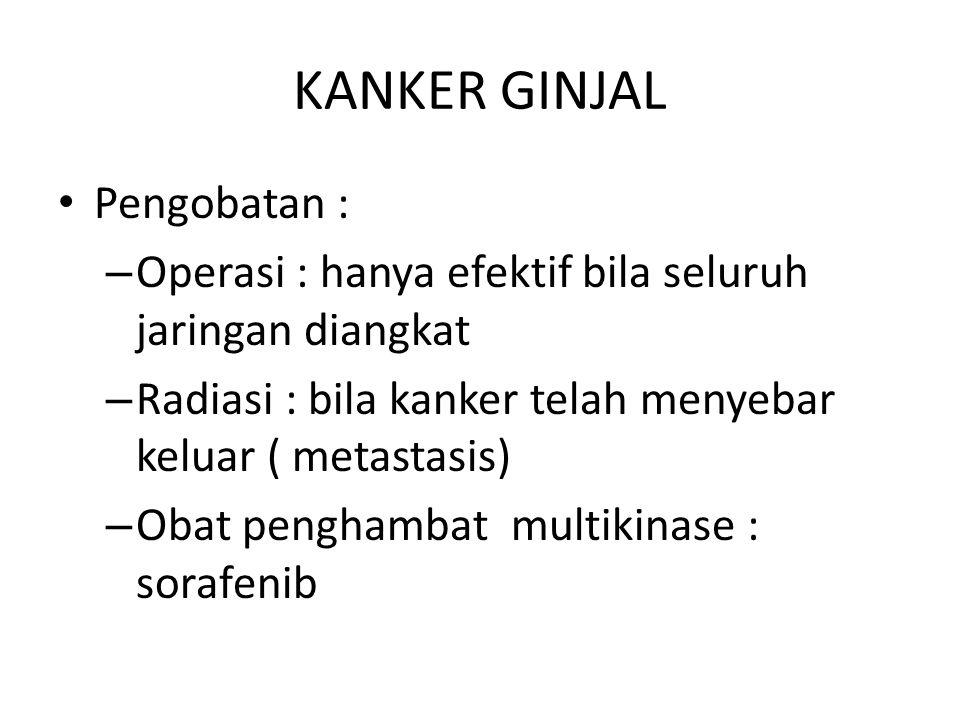 KANKER GINJAL Pengobatan :