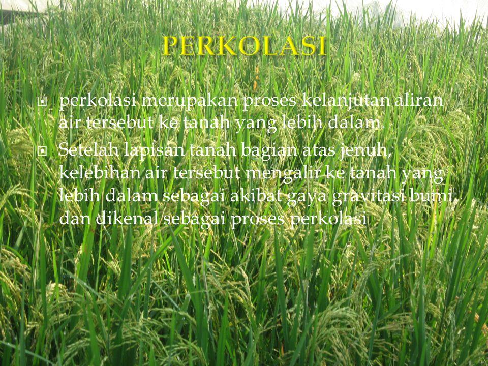 PERKOLASI perkolasi merupakan proses kelanjutan aliran air tersebut ke tanah yang lebih dalam.