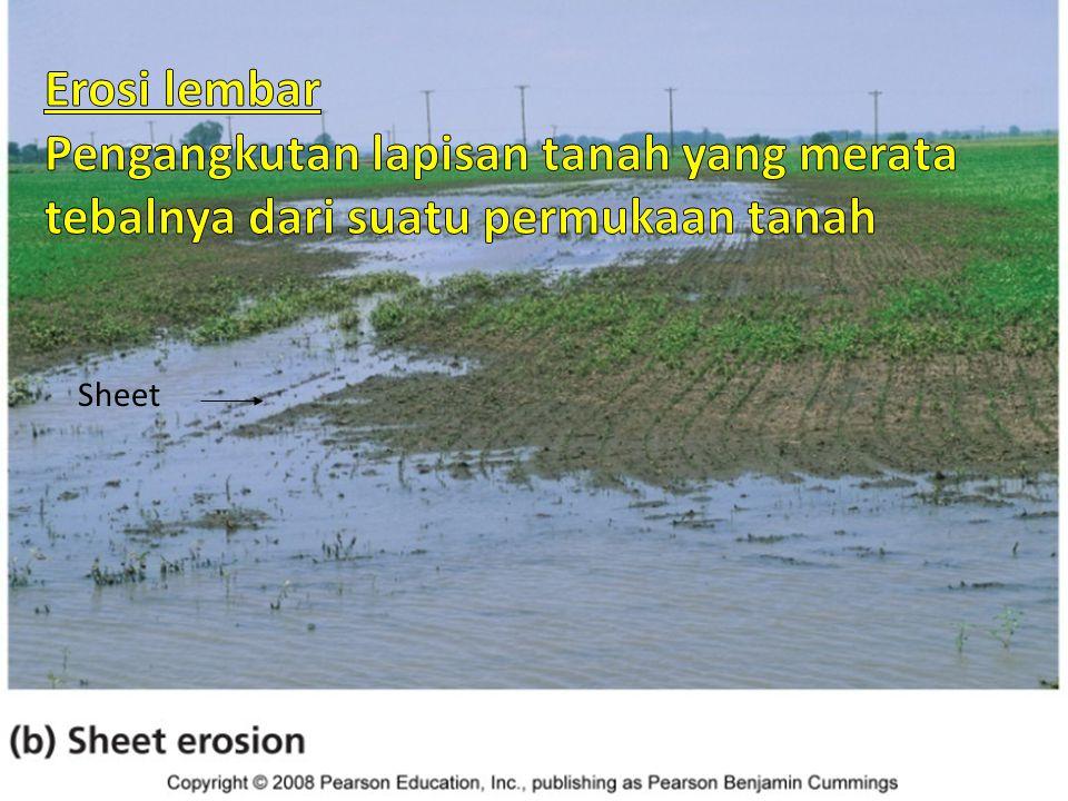 Macam erosi tanah Erosi lembar