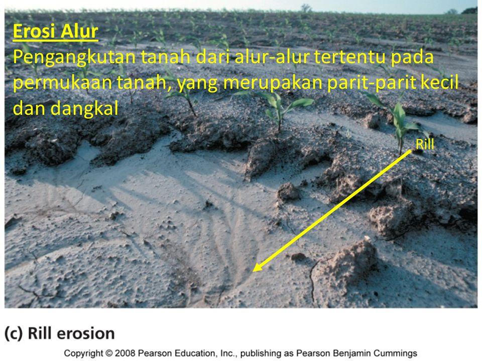 Macam erosi tanah Erosi Alur