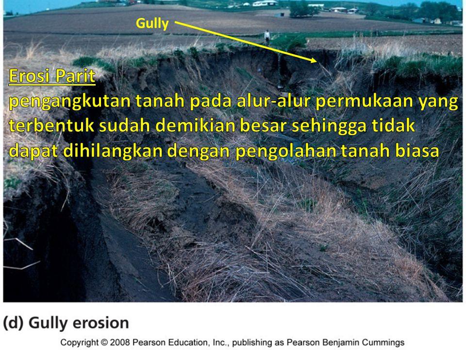 Macam erosi tanah Erosi Parit