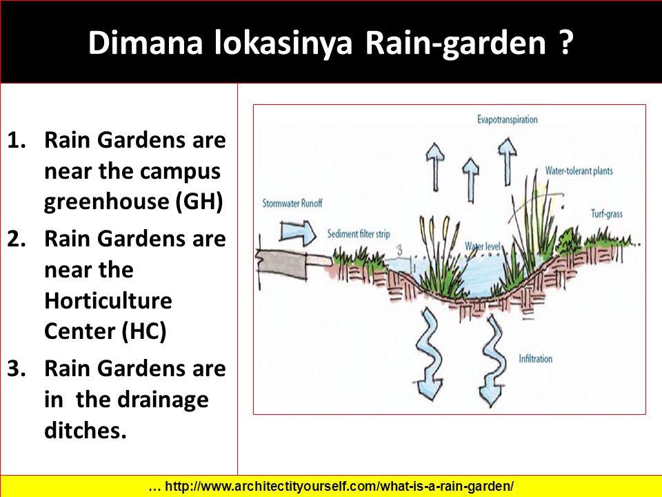 Dimana lokasinya Rain-garden