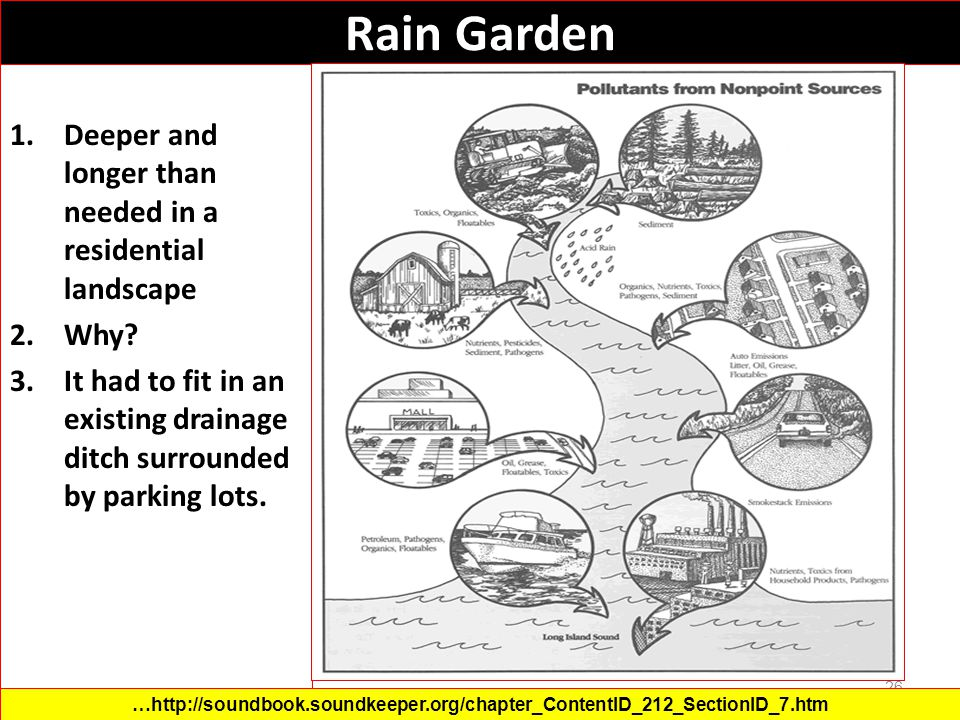 Rain Garden Deeper and longer than needed in a residential landscape