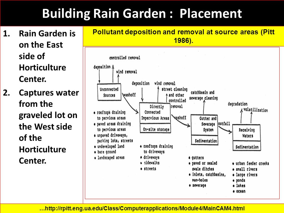 Building Rain Garden : Placement