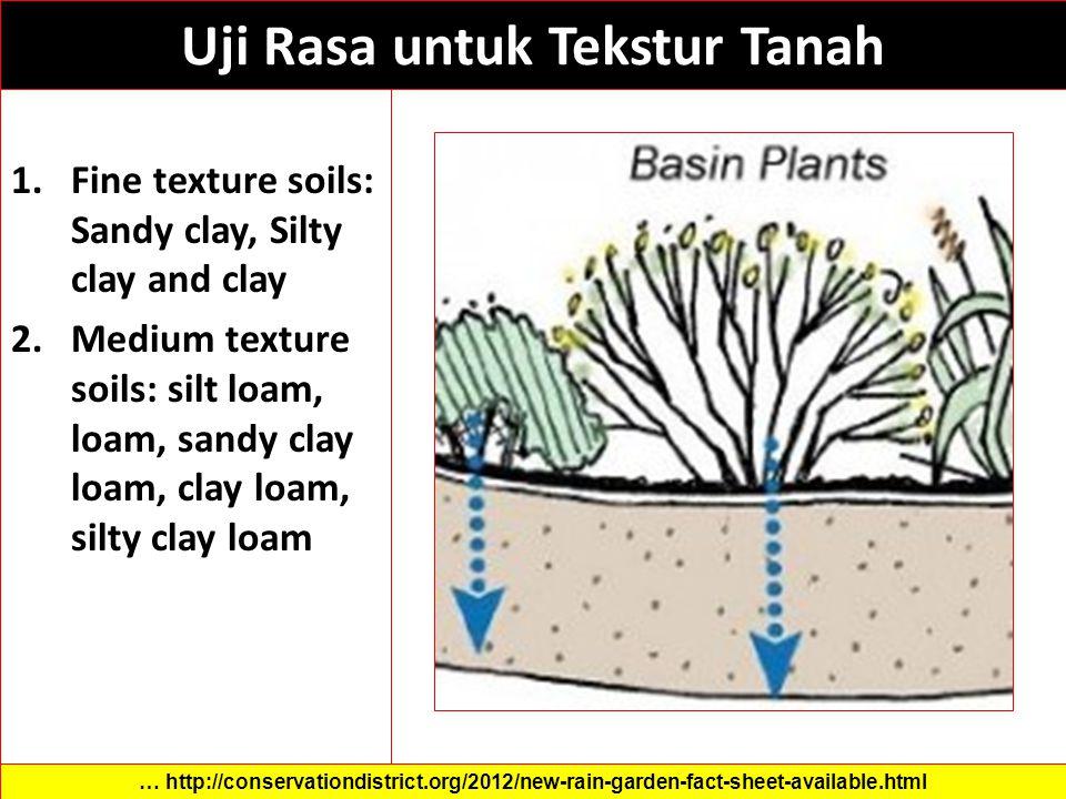 Uji Rasa untuk Tekstur Tanah