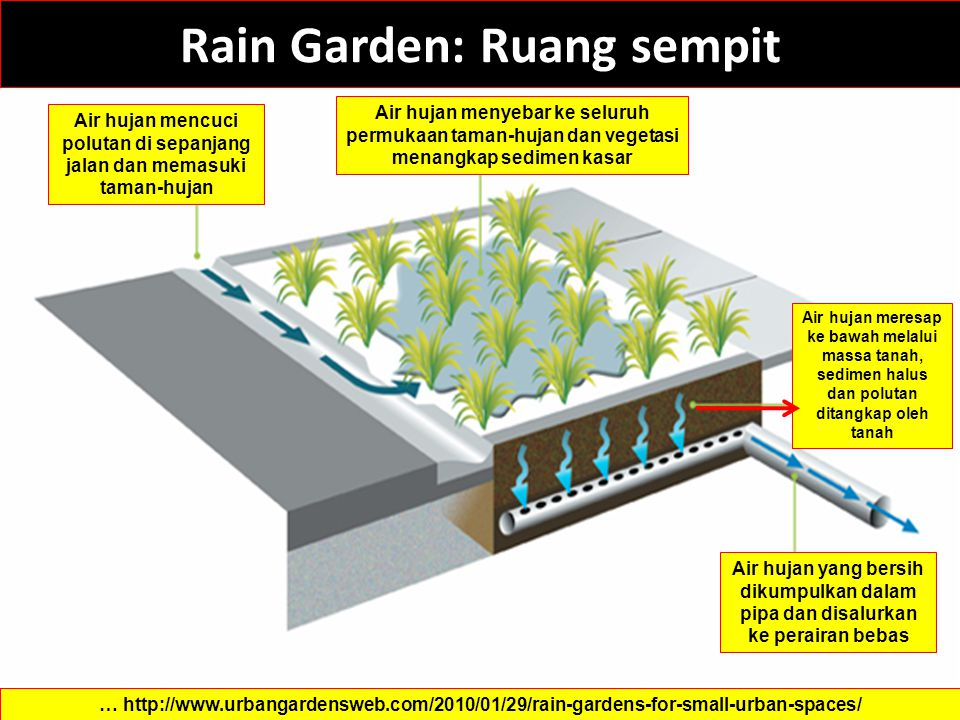 Rain Garden: Ruang sempit