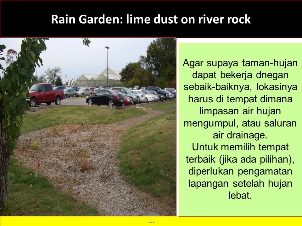 Rain Garden: lime dust on river rock
