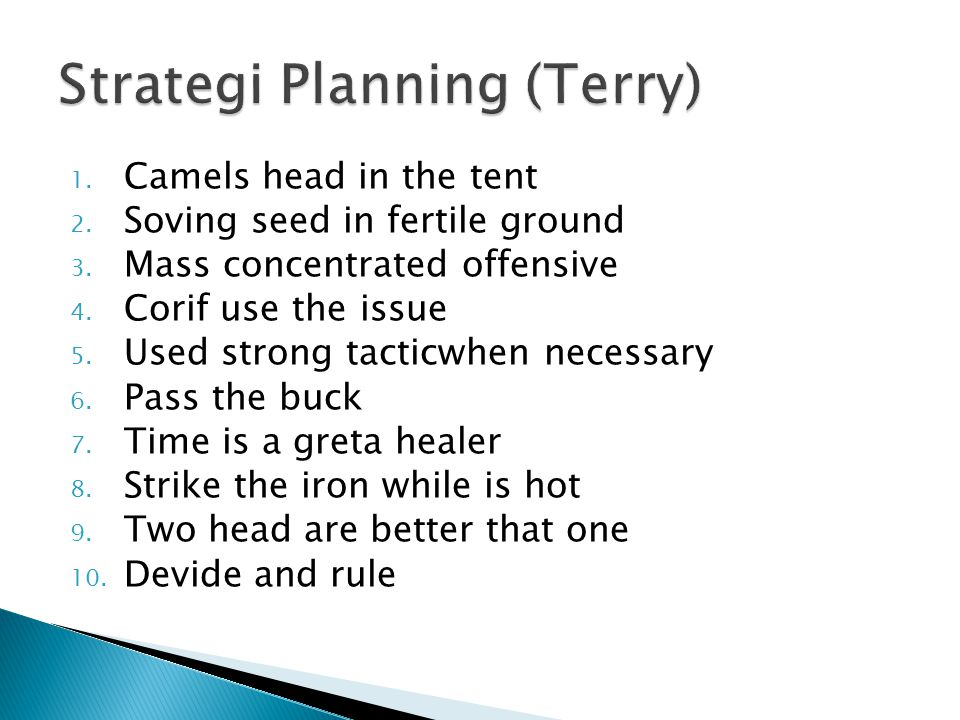 Strategi Planning (Terry)