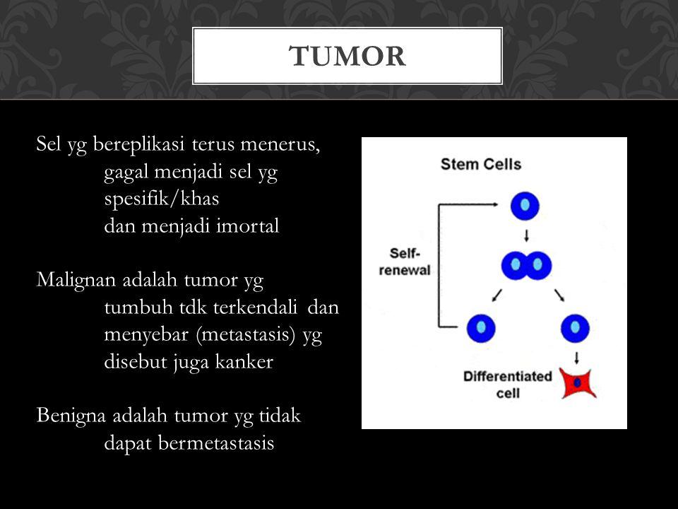 Tumor Sel yg bereplikasi terus menerus,