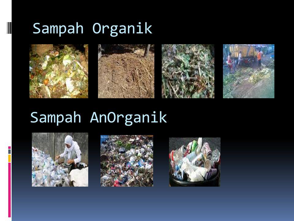 Sampah Organik Sampah AnOrganik