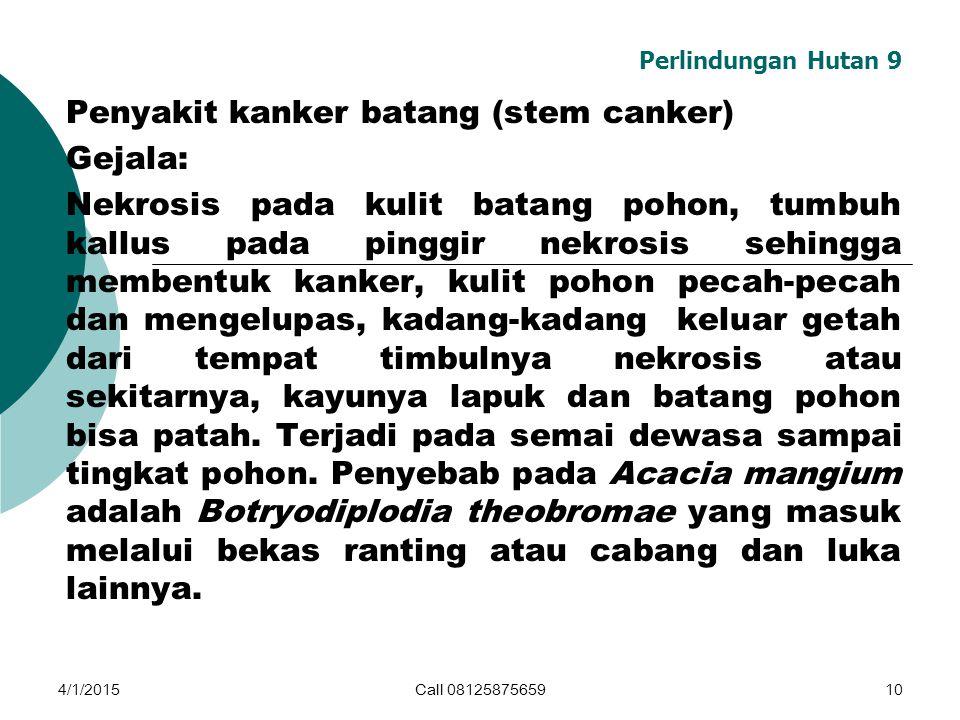Penyakit kanker batang (stem canker) Gejala: