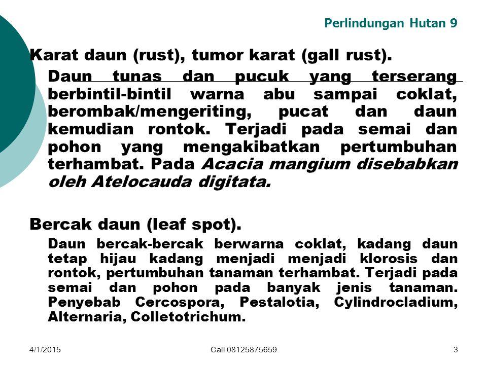 Karat daun (rust), tumor karat (gall rust).