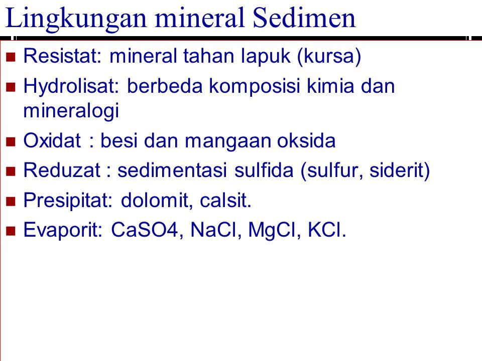 Lingkungan mineral Sedimen