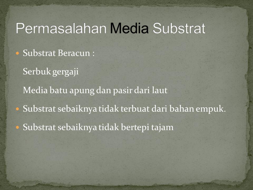 Permasalahan Media Substrat