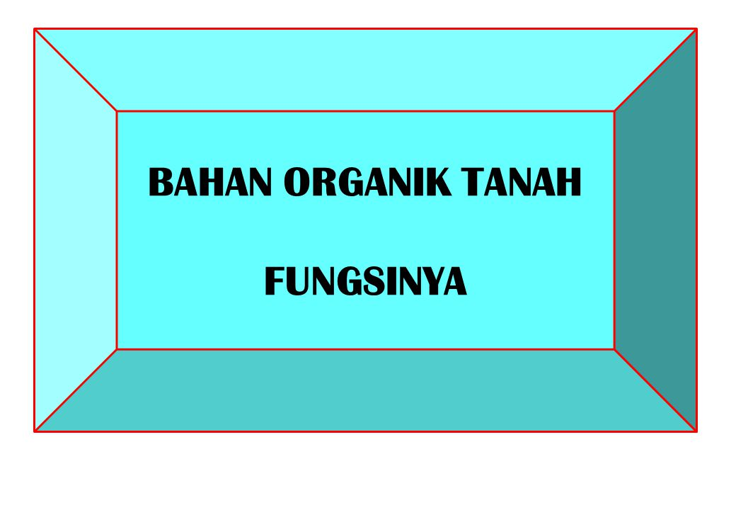 BAHAN ORGANIK TANAH FUNGSINYA