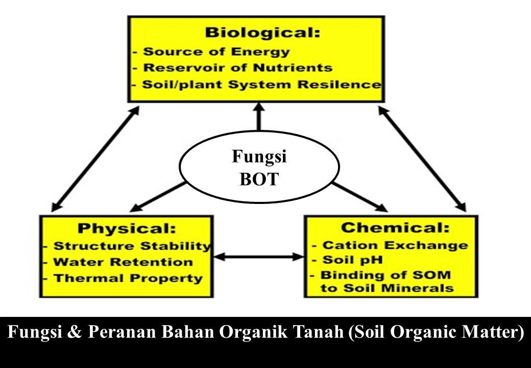 Fungsi & Peranan Bahan Organik Tanah (Soil Organic Matter)