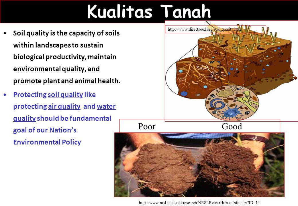 Kualitas Tanah Poor Good