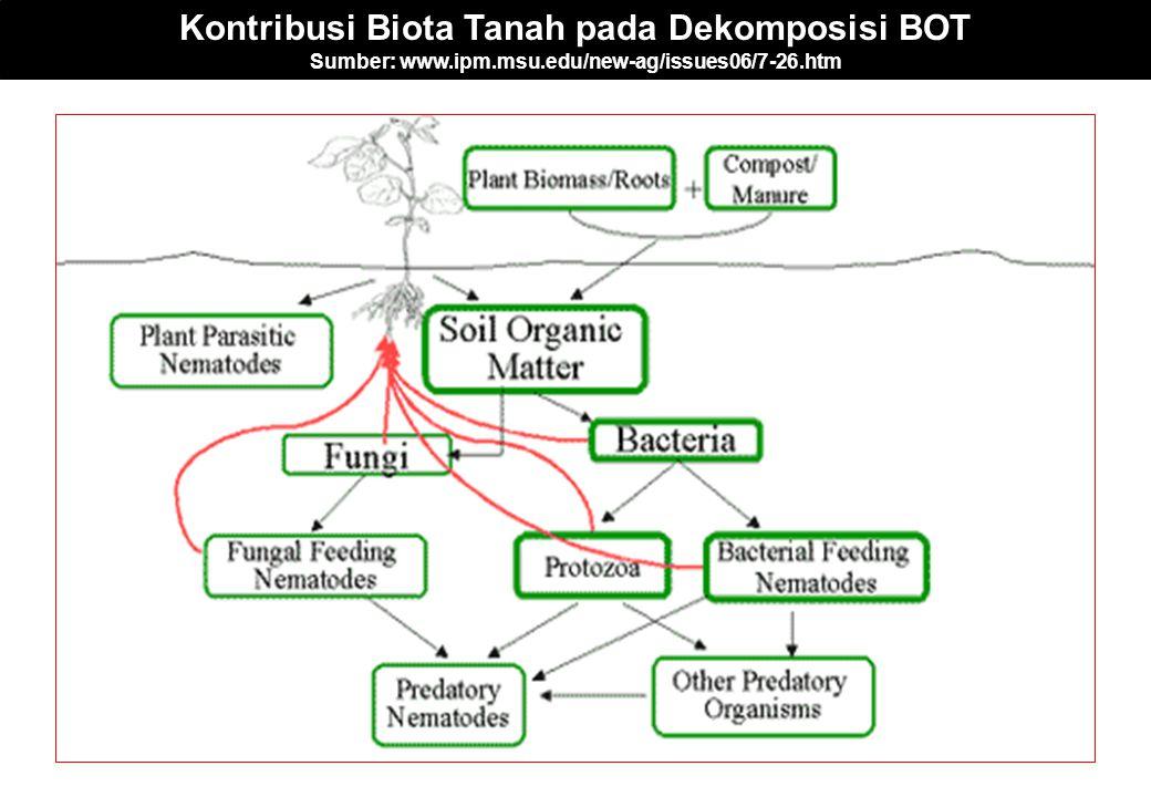 Kontribusi Biota Tanah pada Dekomposisi BOT