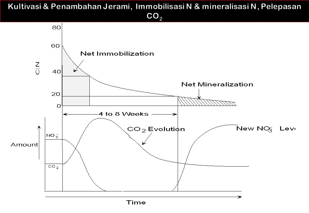 Kultivasi & Penambahan Jerami, Immobilisasi N & mineralisasi N, Pelepasan CO2