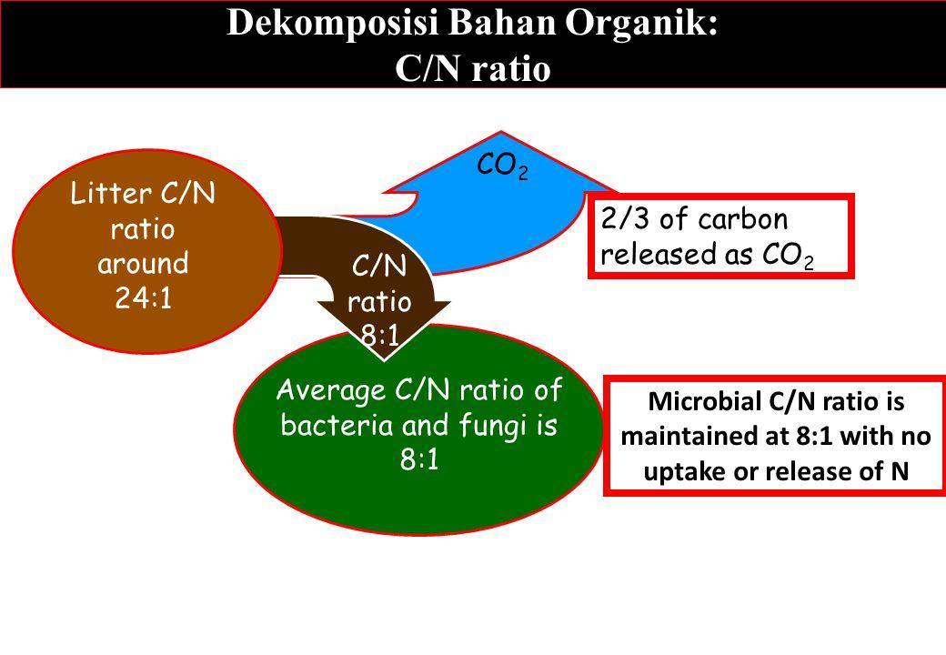 Dekomposisi Bahan Organik: C/N ratio