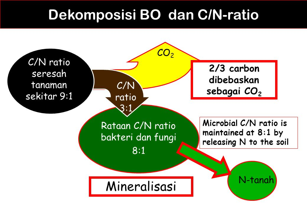 2/3 carbon dibebaskan sebagai CO2