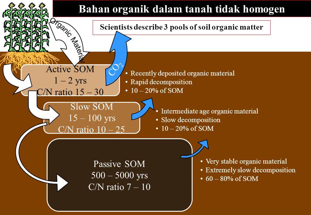 Bahan organik dalam tanah tidak homogen