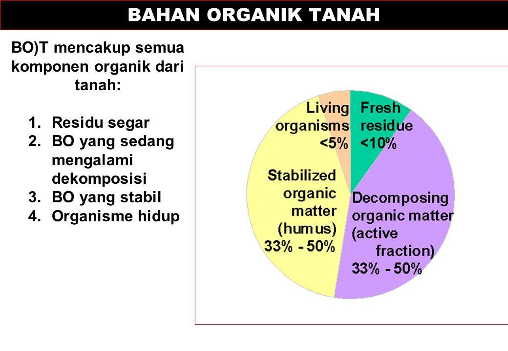BO)T mencakup semua komponen organik dari tanah: