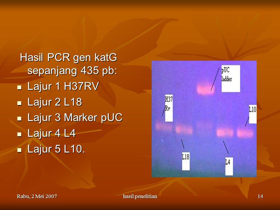 Hasil PCR gen katG sepanjang 435 pb: Lajur 1 H37RV Lajur 2 L18