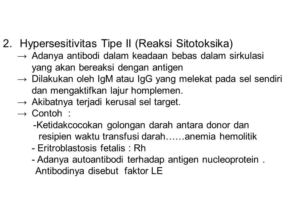 Hypersesitivitas Tipe II (Reaksi Sitotoksika)