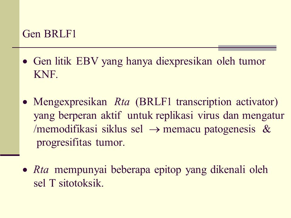 Gen BRLF1  Gen litik EBV yang hanya diexpresikan oleh tumor KNF