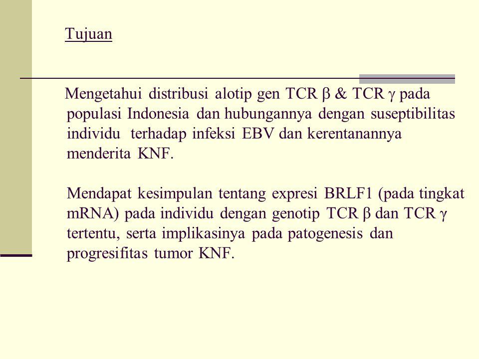 Tujuan Mengetahui distribusi alotip gen TCR  & TCR  pada populasi Indonesia dan hubungannya dengan suseptibilitas individu terhadap infeksi EBV dan kerentanannya menderita KNF.