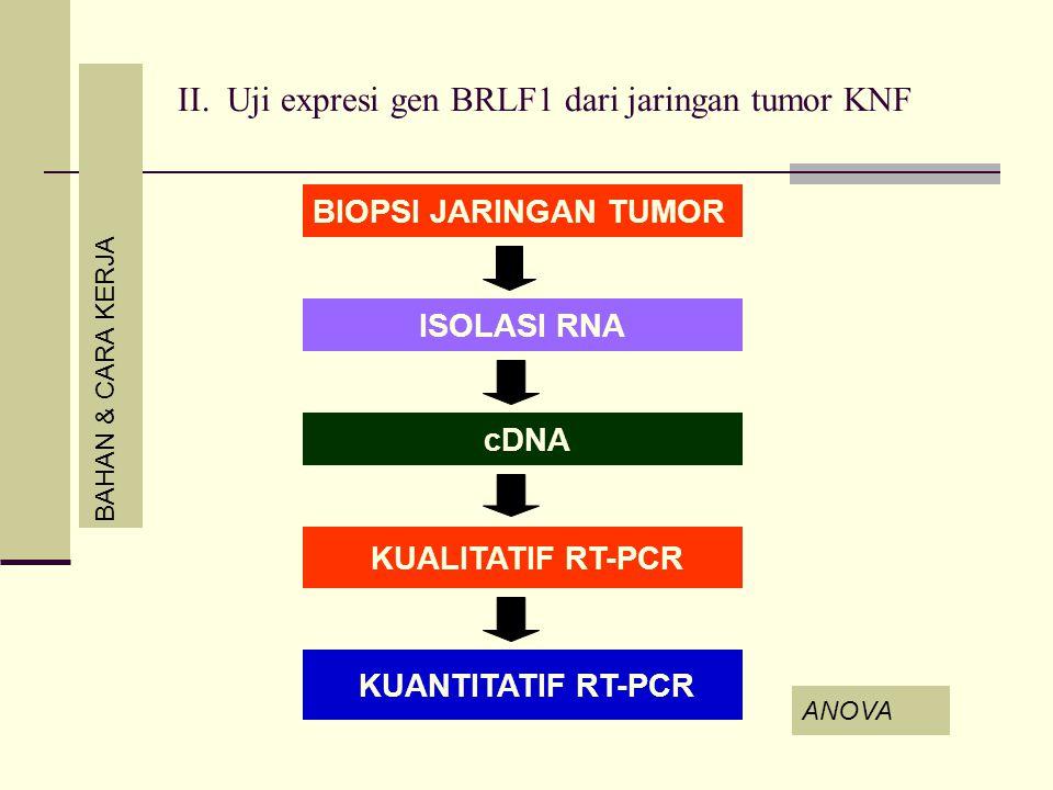 II. Uji expresi gen BRLF1 dari jaringan tumor KNF