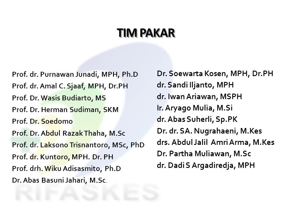 TIM PAKAR Dr. Soewarta Kosen, MPH, Dr.PH dr. Sandi Iljanto, MPH