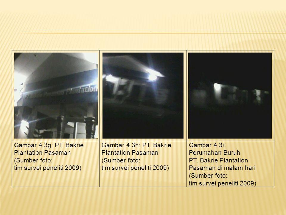 Gambar 4.3g: PT. Bakrie Plantation Pasaman