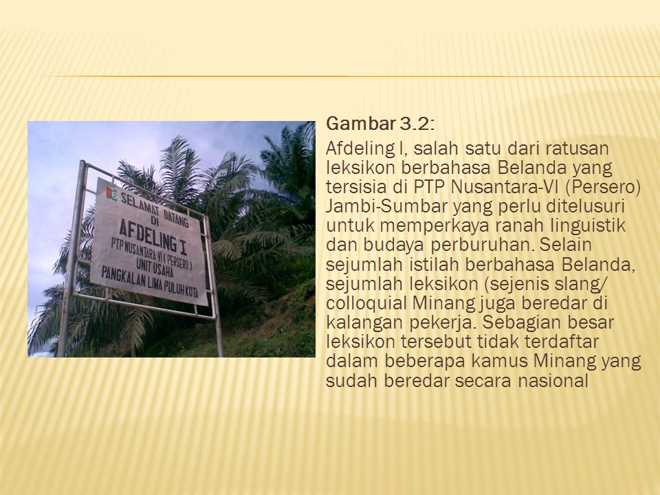 Gambar 3.2: Afdeling I, salah satu dari ratusan leksikon berbahasa Belanda yang tersisia di PTP Nusantara-VI (Persero) Jambi-Sumbar yang perlu ditelusuri untuk memperkaya ranah linguistik dan budaya perburuhan.