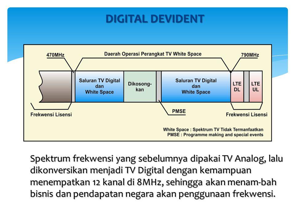 DIGITAL DEVIDENT