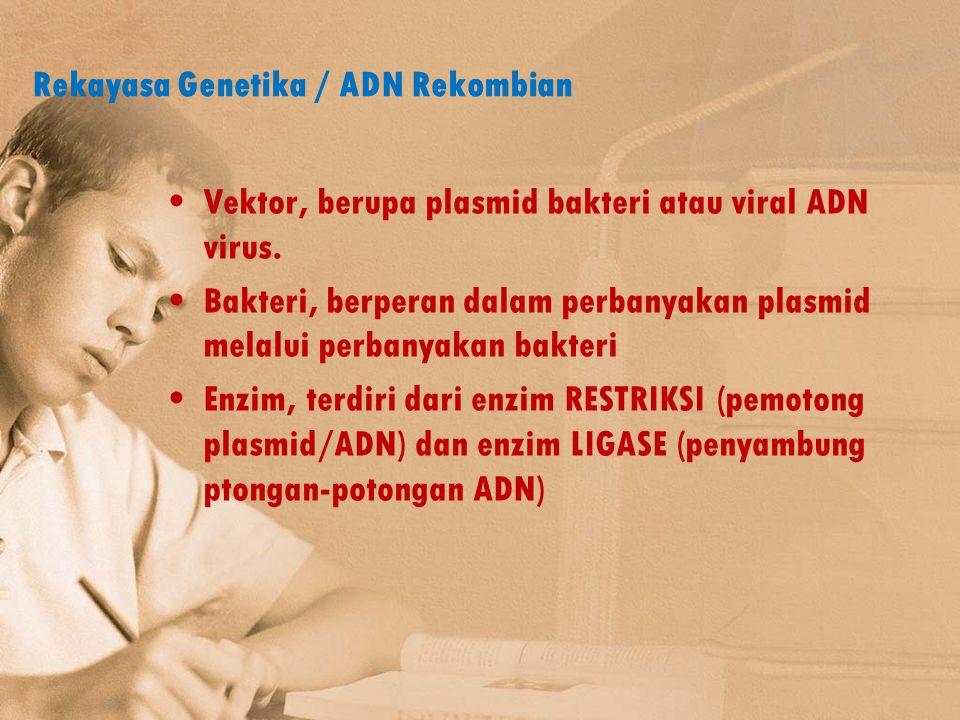 Rekayasa Genetika / ADN Rekombian