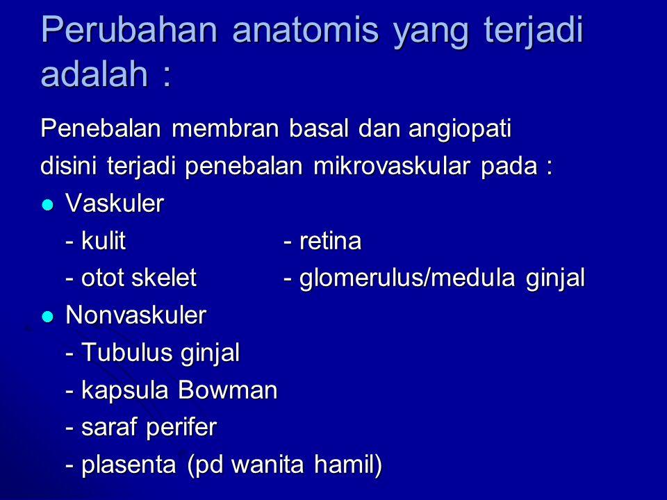 Perubahan anatomis yang terjadi adalah :