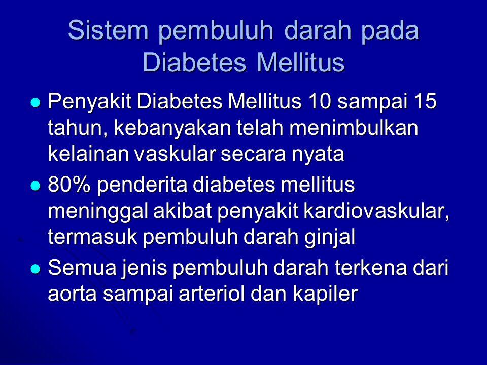 Sistem pembuluh darah pada Diabetes Mellitus