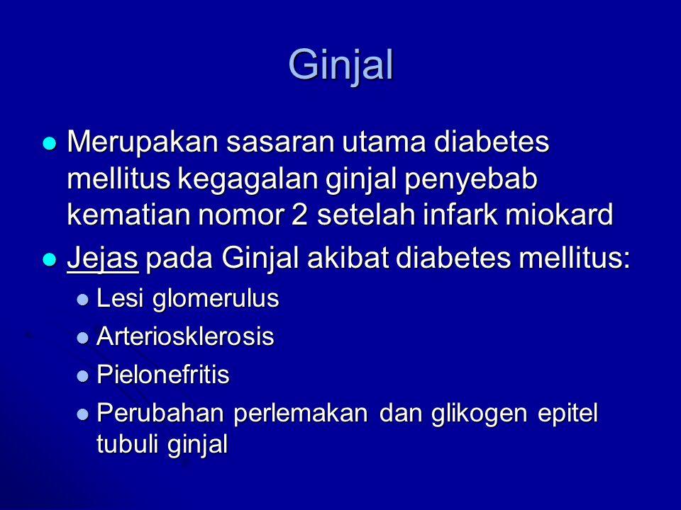 Ginjal Merupakan sasaran utama diabetes mellitus kegagalan ginjal penyebab kematian nomor 2 setelah infark miokard.
