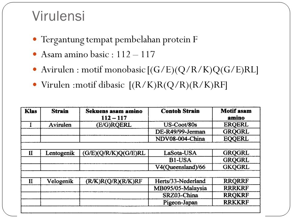 Virulensi Tergantung tempat pembelahan protein F