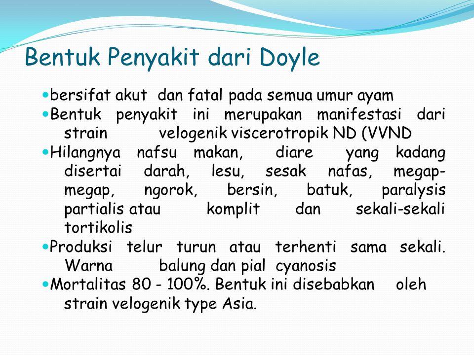 Bentuk Penyakit dari Doyle