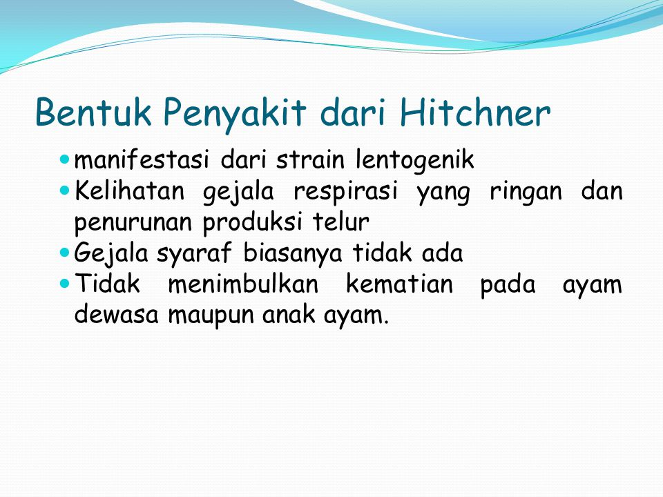 Bentuk Penyakit dari Hitchner