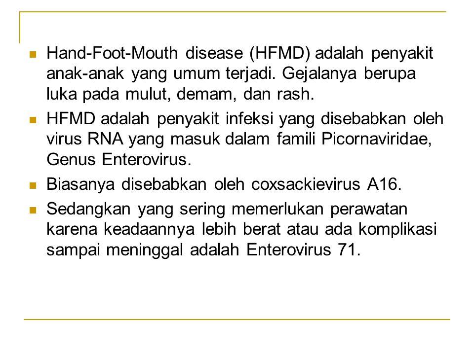 Hand-Foot-Mouth disease (HFMD) adalah penyakit anak-anak yang umum terjadi. Gejalanya berupa luka pada mulut, demam, dan rash.