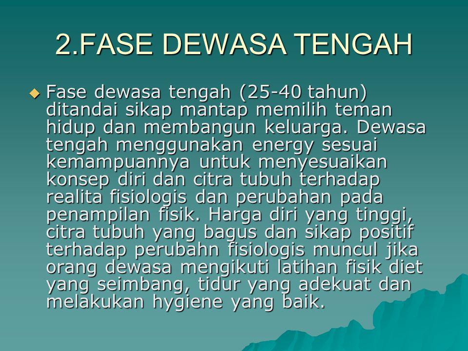 2.FASE DEWASA TENGAH